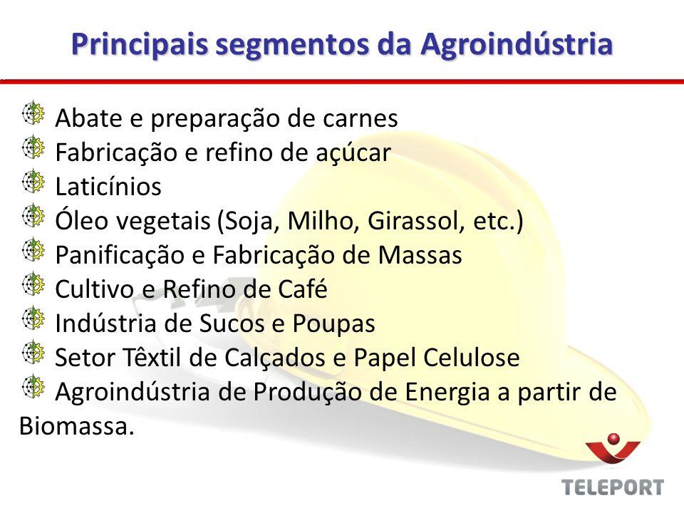 Principais segmentos da Agroindústria Abate e preparação de carnes Fabricação e refino de açúcar Laticínios Óleo vegetais (Soja, Milho, Girassol, etc.