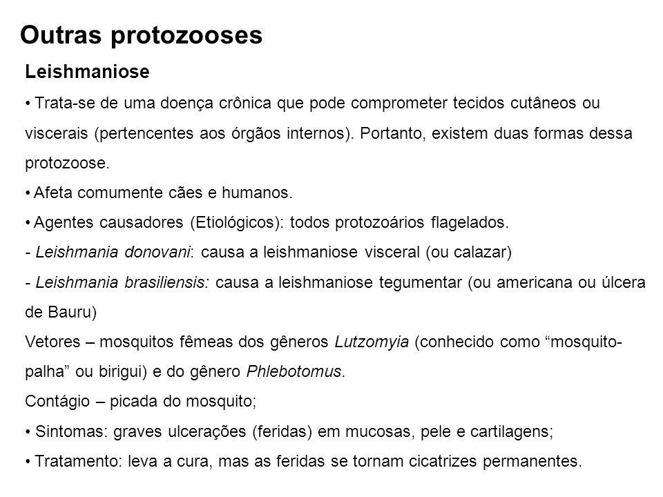 Leishmaniose Trata-se de uma doença crônica que pode comprometer tecidos cutâneos ou viscerais (pertencentes aos órgãos internos). Portanto, existem d
