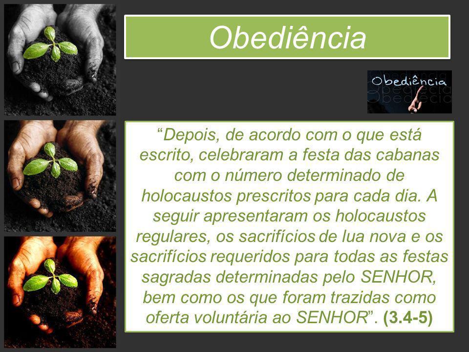 Obediência Depois, de acordo com o que está escrito, celebraram a festa das cabanas com o número determinado de holocaustos prescritos para cada dia.