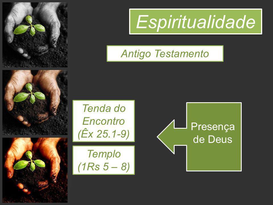 Espiritualidade Vocês não sabem que são santuários de Deus e que o Espírito de Deus habita em vocês.