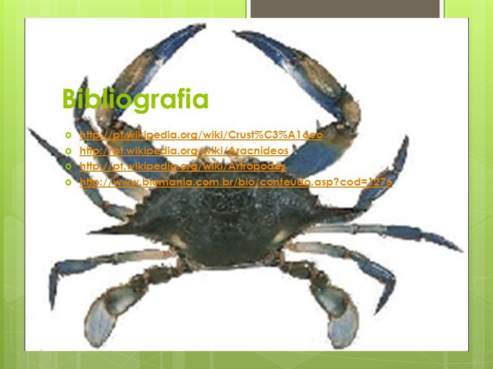 Bibliografia http://pt.wikipedia.org/wiki/Crust%C3%A1ceo http://pt.wikipedia.org/wiki/Aracnideos http://pt.wikipedia.org/wiki/Artropodes http://www.biomania.com.br/bio/conteudo.asp?cod=1276