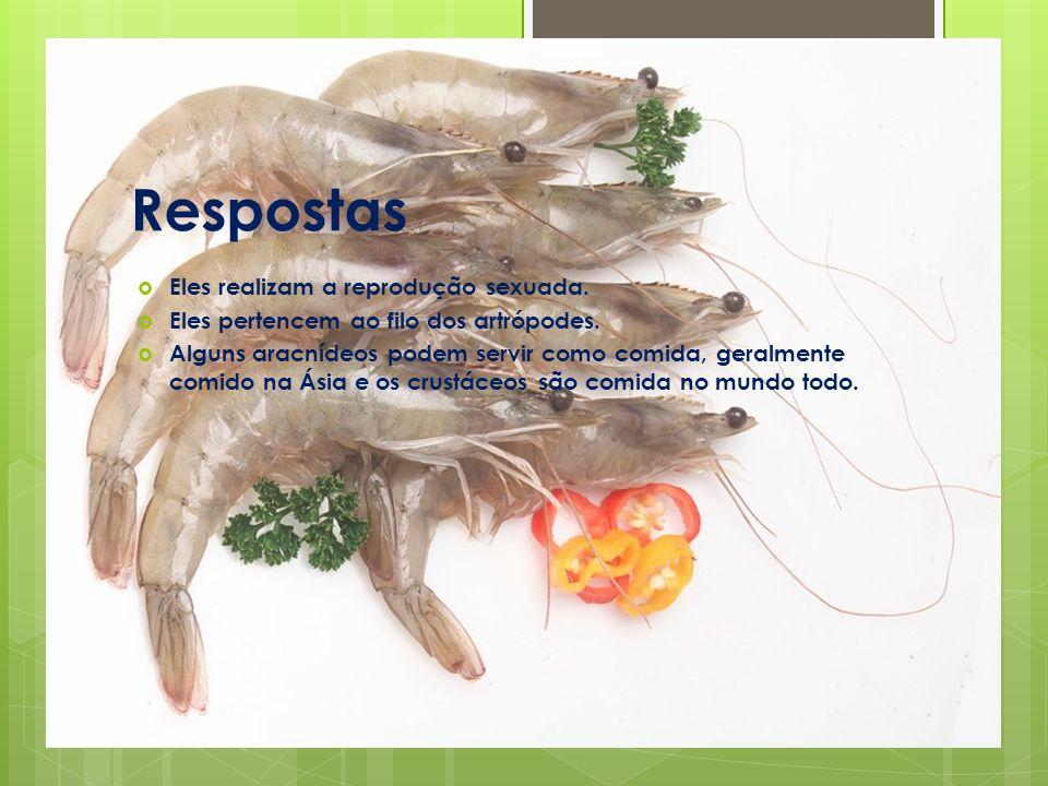 Respostas Eles realizam a reprodução sexuada.Eles pertencem ao filo dos artrópodes.