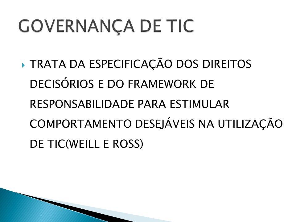 Esclarecer o papel da TIC Definir os requisitos de integração e padronização Determinar os serviços compartilhados Necessidades de aplicações: compradas ou desenvolvidas Centralizado X Descentralizado As iniciativas que terão recursos financeiros