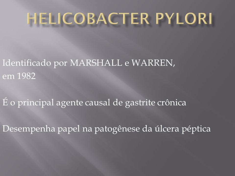Identificado por MARSHALL e WARREN, em 1982 É o principal agente causal de gastrite crônica Desempenha papel na patogênese da úlcera péptica