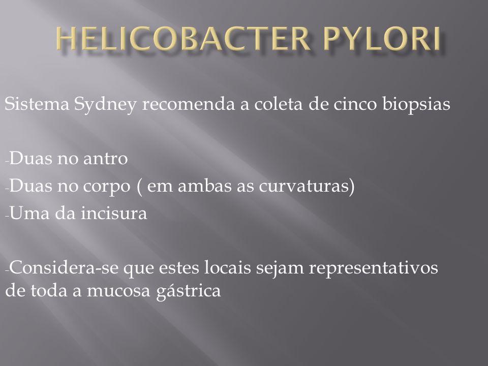 Sistema Sydney recomenda a coleta de cinco biopsias - Duas no antro - Duas no corpo ( em ambas as curvaturas) - Uma da incisura - Considera-se que estes locais sejam representativos de toda a mucosa gástrica