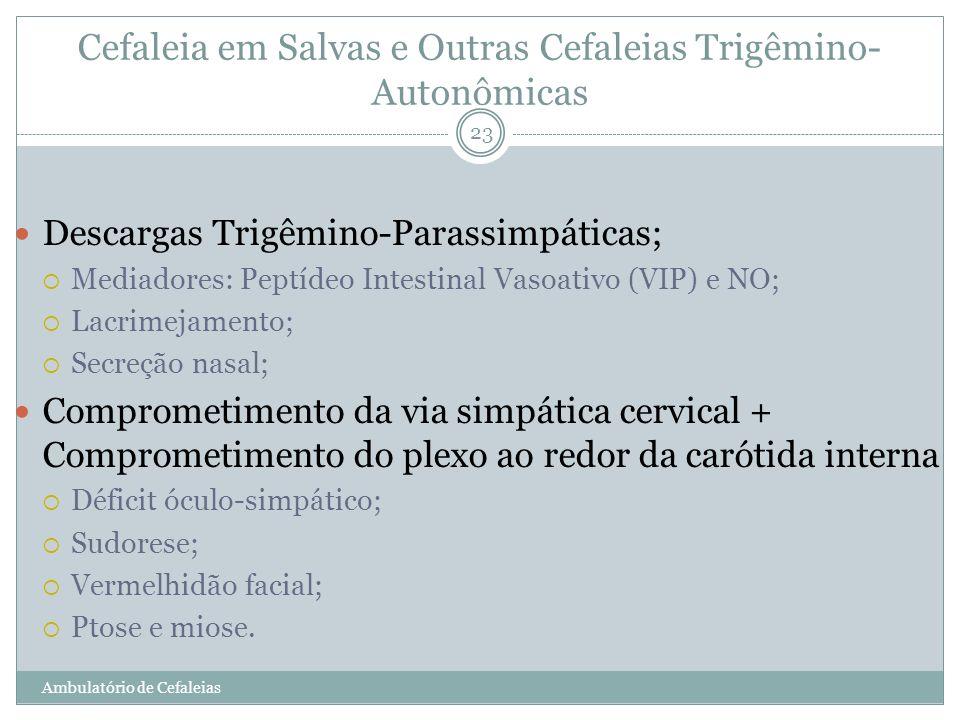 23 Descargas Trigêmino-Parassimpáticas; Mediadores: Peptídeo Intestinal Vasoativo (VIP) e NO; Lacrimejamento; Secreção nasal; Comprometimento da via s
