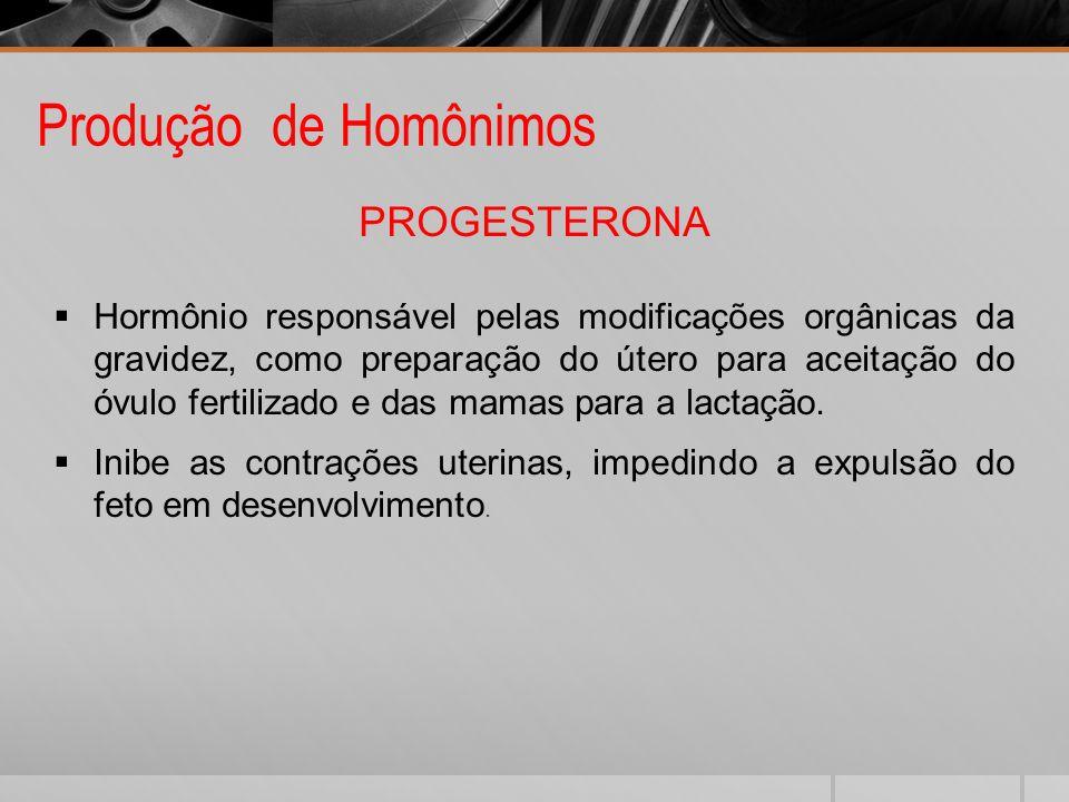 Produção de Homônimos PROGESTERONA Hormônio responsável pelas modificações orgânicas da gravidez, como preparação do útero para aceitação do óvulo fer