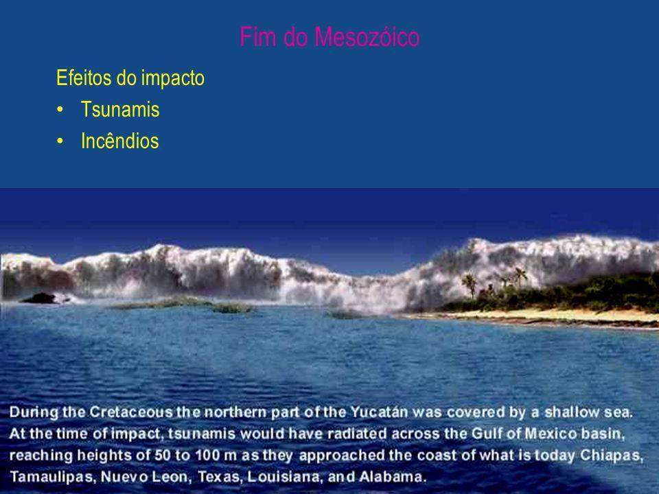 Efeitos do impacto Tsunamis Incêndios