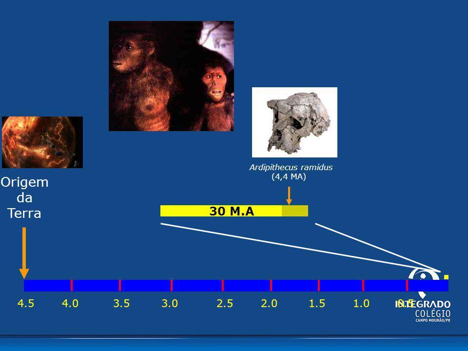 4.54.03.53.02.02.51.01.50.5 30 M.A Ardipithecus ramidus (4,4 MA) Origem da Terra