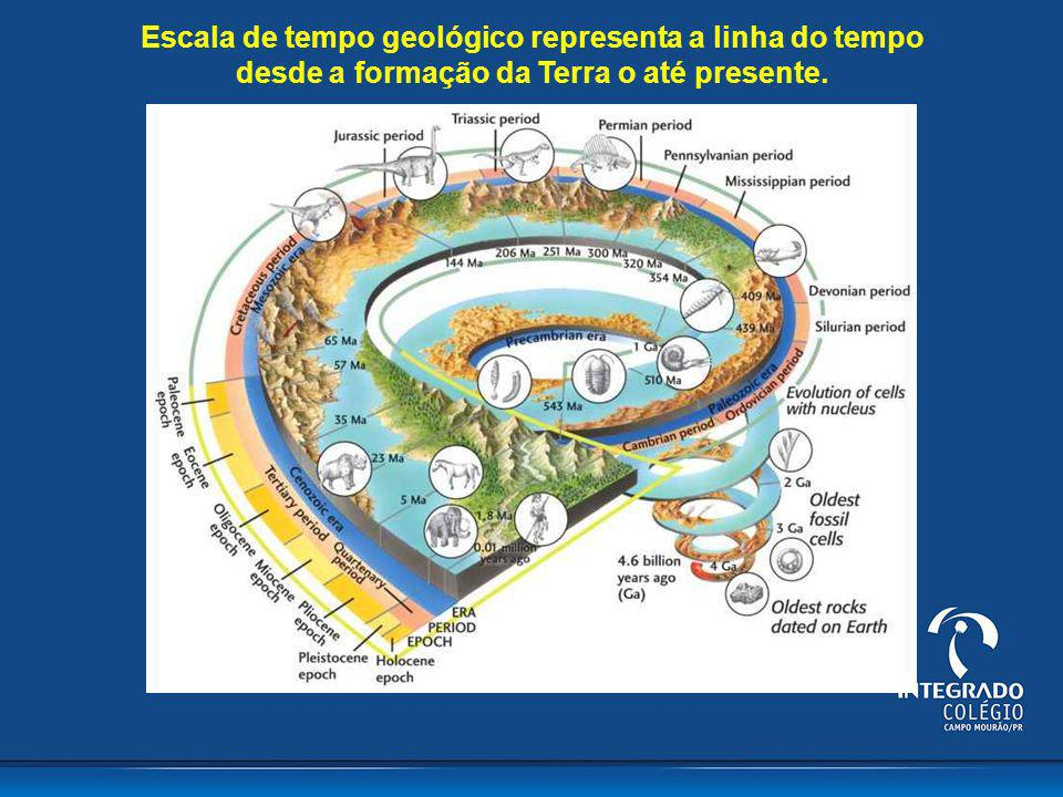 Escala do tempo geológico é dividida em: Éons, eras, períodos, épocas e idades que se baseiam nos grandes eventos geológicos e paleontológicos marcantes da história do planeta e.g., extinções em massa