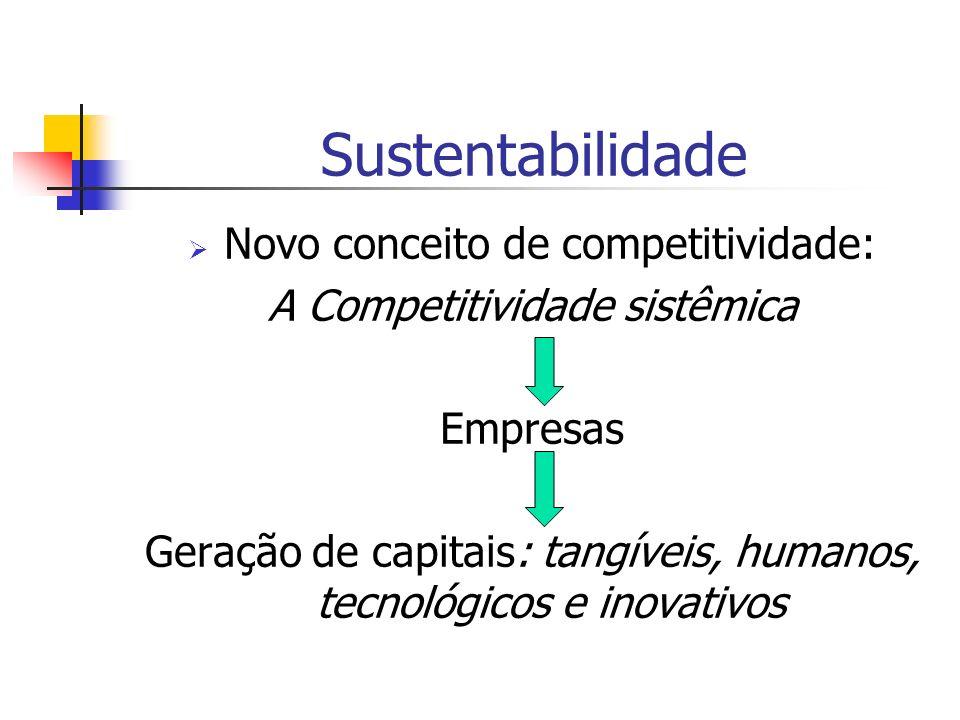 Sustentabilidade Novo conceito de competitividade: A Competitividade sistêmica Empresas Geração de capitais: tangíveis, humanos, tecnológicos e inovat