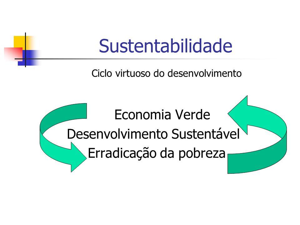 Sustentabilidade Economia Verde Desenvolvimento Sustentável Erradicação da pobreza Ciclo virtuoso do desenvolvimento