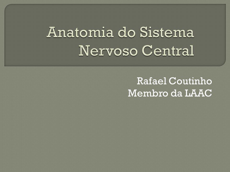 Rafael Coutinho Membro da LAAC