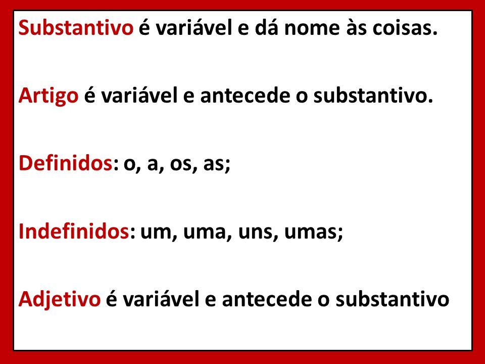 Substantivo é variável e dá nome às coisas. Artigo é variável e antecede o substantivo. Definidos: o, a, os, as; Indefinidos: um, uma, uns, umas; Adje