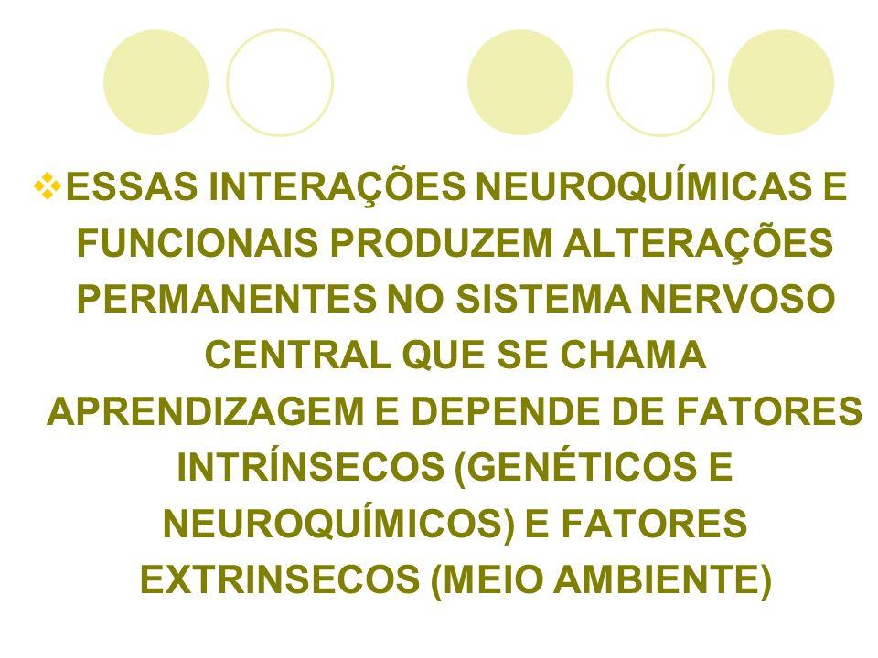ESSAS INTERAÇÕES NEUROQUÍMICAS E FUNCIONAIS PRODUZEM ALTERAÇÕES PERMANENTES NO SISTEMA NERVOSO CENTRAL QUE SE CHAMA APRENDIZAGEM E DEPENDE DE FATORES