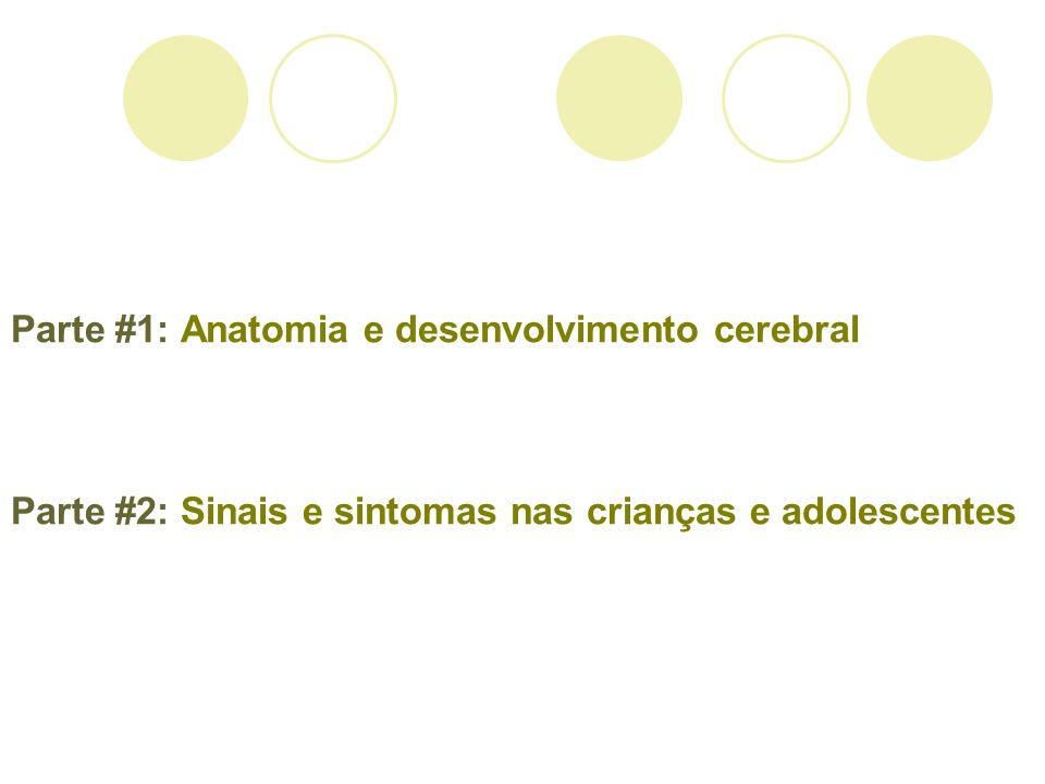 Parte #1: Anatomia e desenvolvimento cerebral Parte #2: Sinais e sintomas nas crianças e adolescentes
