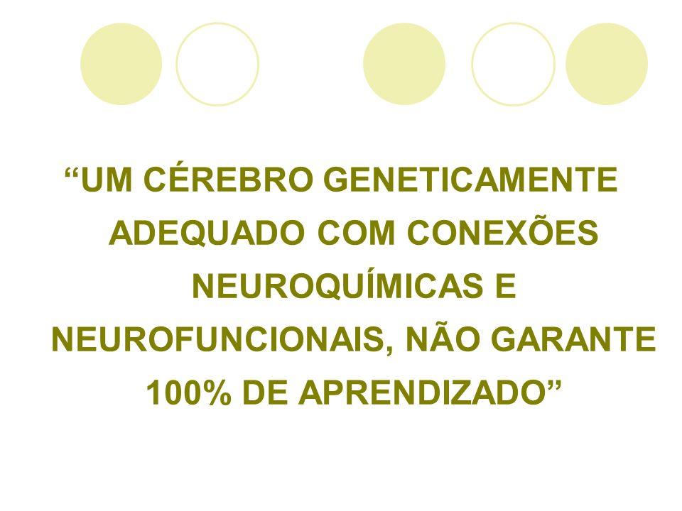 UM CÉREBRO GENETICAMENTE ADEQUADO COM CONEXÕES NEUROQUÍMICAS E NEUROFUNCIONAIS, NÃO GARANTE 100% DE APRENDIZADO