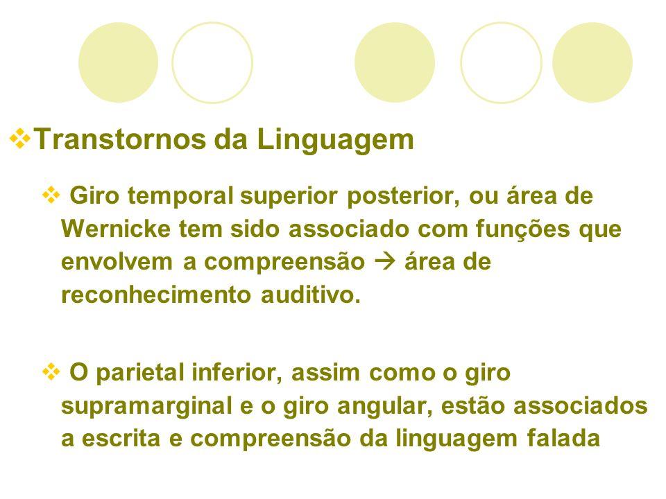 Transtornos da Linguagem Giro temporal superior posterior, ou área de Wernicke tem sido associado com funções que envolvem a compreensão área de recon