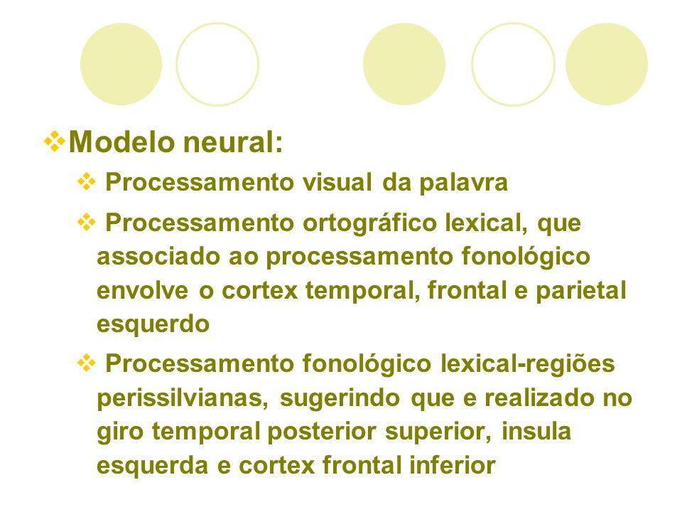 Modelo neural: Processamento visual da palavra Processamento ortográfico lexical, que associado ao processamento fonológico envolve o cortex temporal,