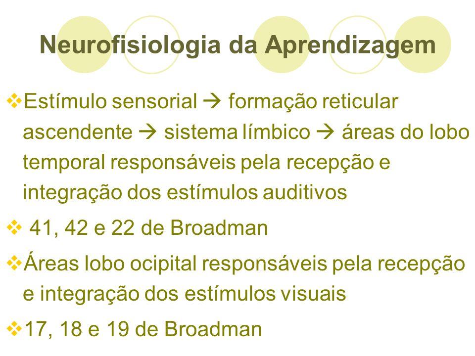 Neurofisiologia da Aprendizagem Estímulo sensorial formação reticular ascendente sistema límbico áreas do lobo temporal responsáveis pela recepção e i