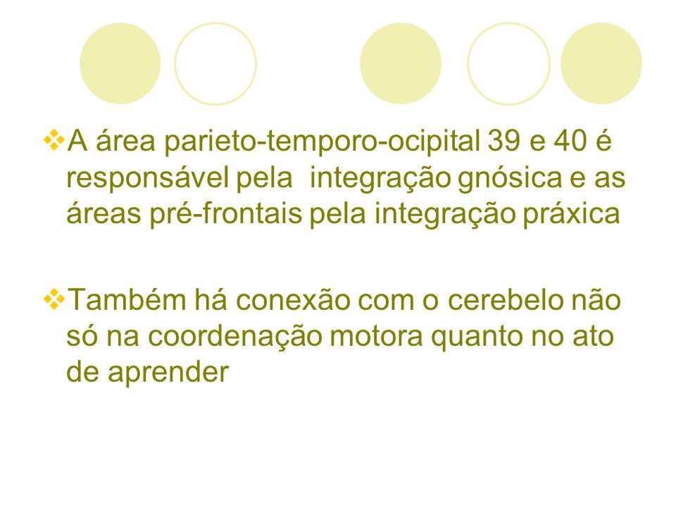 A área parieto-temporo-ocipital 39 e 40 é responsável pela integração gnósica e as áreas pré-frontais pela integração práxica Também há conexão com o