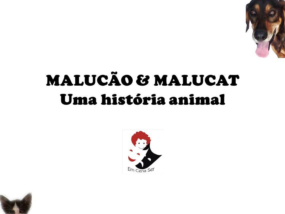 Espetáculo teatral infantil com temática de posse responsável de animais domésticos, com atores, atores mirins e bonecos.