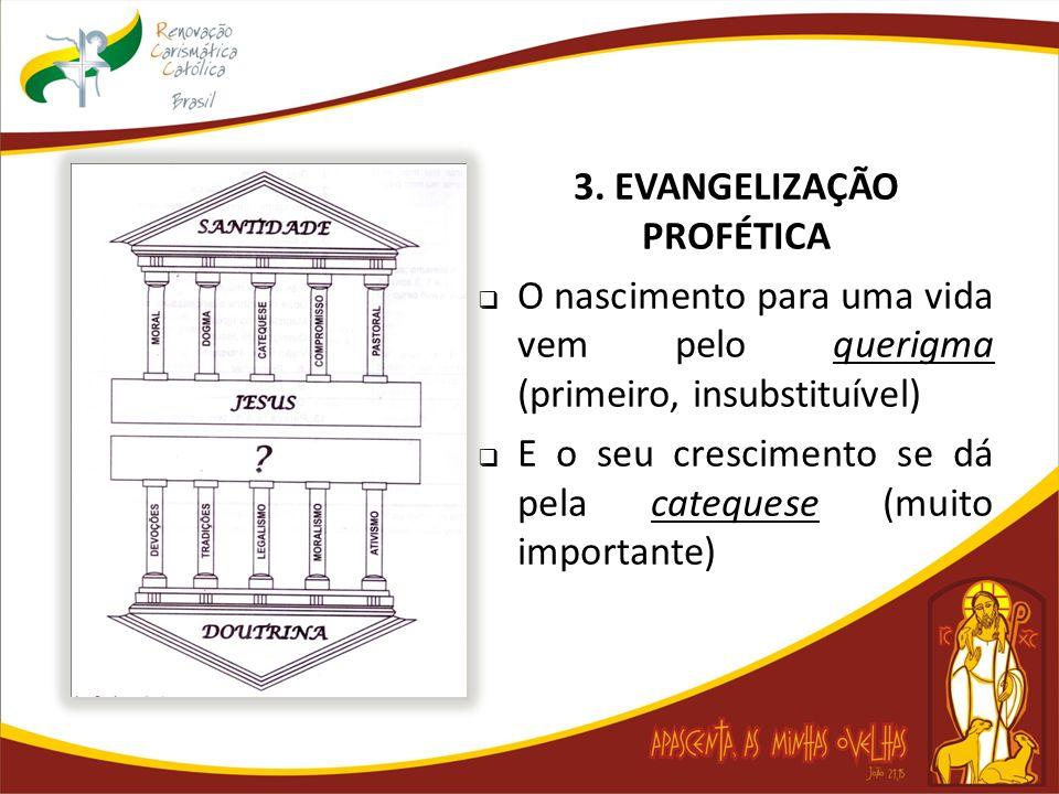 3. EVANGELIZAÇÃO PROFÉTICA O nascimento para uma vida vem pelo querigma (primeiro, insubstituível) E o seu crescimento se dá pela catequese (muito imp