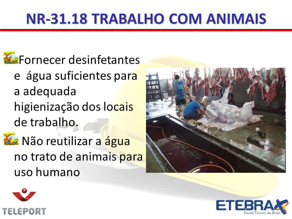 NR-31.18 TRABALHO COM ANIMAIS Fornecer desinfetantes e água suficientes para a adequada higienização dos locais de trabalho.