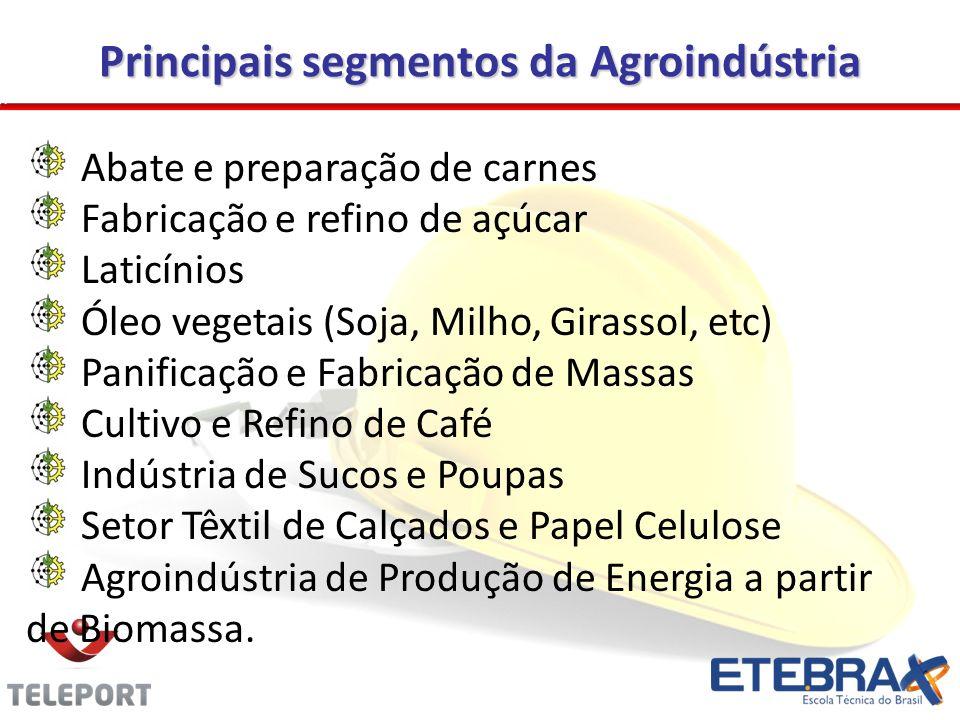 Principais segmentos da Agroindústria Abate e preparação de carnes Fabricação e refino de açúcar Laticínios Óleo vegetais (Soja, Milho, Girassol, etc) Panificação e Fabricação de Massas Cultivo e Refino de Café Indústria de Sucos e Poupas Setor Têxtil de Calçados e Papel Celulose Agroindústria de Produção de Energia a partir de Biomassa.