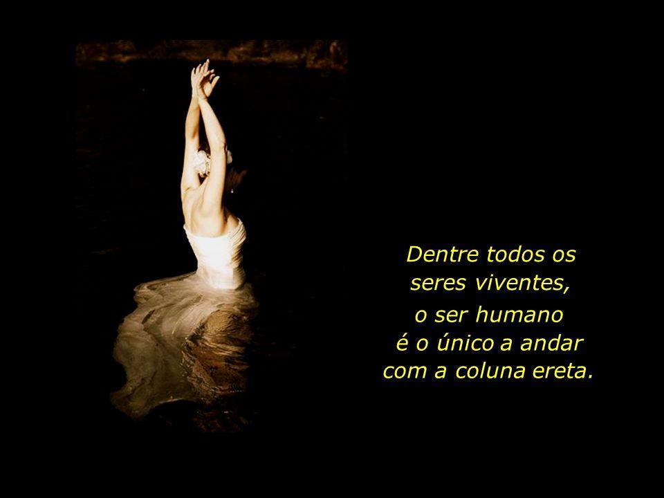 ...o espírito não vai a lado nenhum sem as pernas do corpo, José Saramago e o corpo não seria capaz de mover-se se lhe faltassem as asas do espírito.