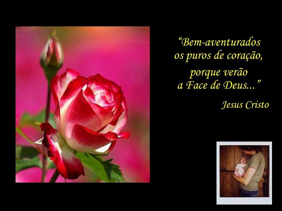 Formatação: um_peregrino@hotmail.com Ó Amigo! No jardim de teu coração, nada plantes salvo a rosa do amor...