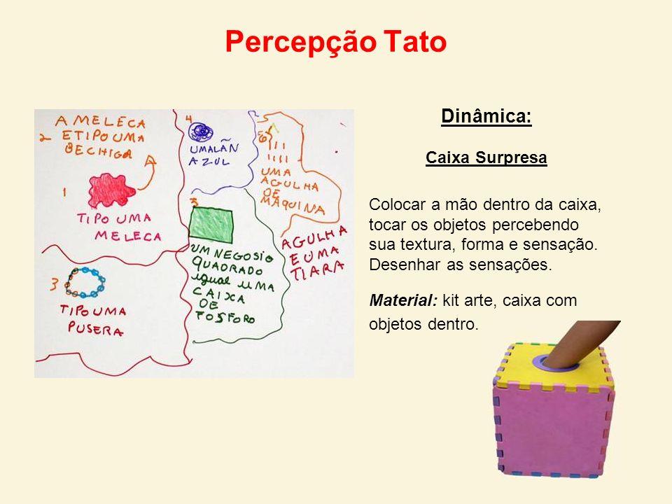 Percepção Tato Dinâmica: Caixa Surpresa Colocar a mão dentro da caixa, tocar os objetos percebendo sua textura, forma e sensação. Desenhar as sensaçõe