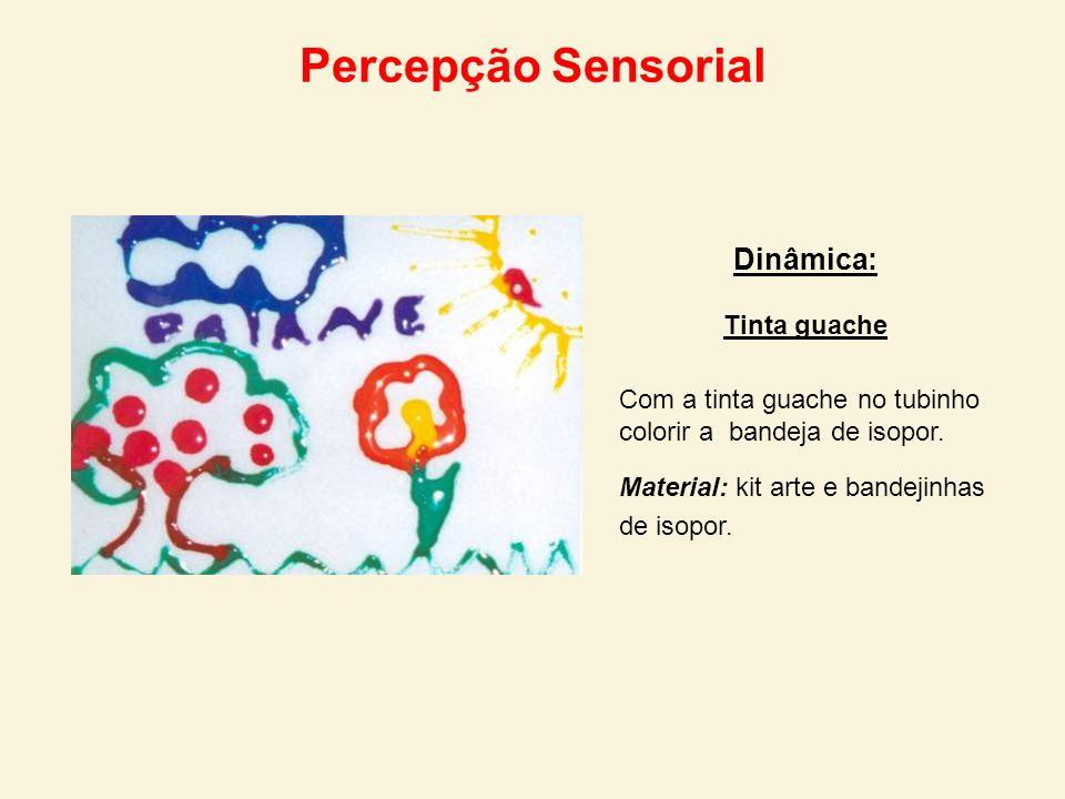 Percepção Sensorial Dinâmica: Tinta guache Com a tinta guache no tubinho colorir a bandeja de isopor. Material: kit arte e bandejinhas de isopor.