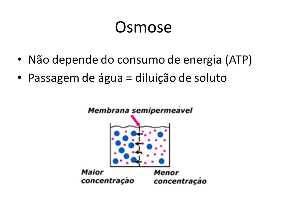 Osmose Não depende do consumo de energia (ATP) Passagem de água = diluição de soluto