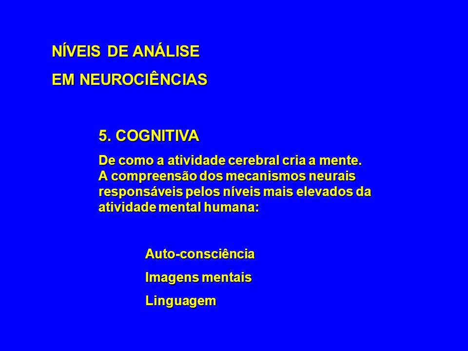 NÍVEIS DE ANÁLISE EM NEUROCIÊNCIAS 5. COGNITIVA De como a atividade cerebral cria a mente. A compreensão dos mecanismos neurais responsáveis pelos nív