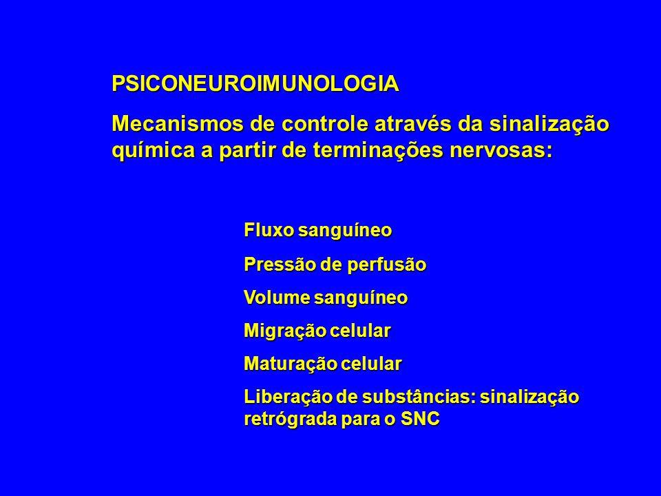PSICONEUROIMUNOLOGIA Mecanismos de controle através da sinalização química a partir de terminações nervosas: Fluxo sanguíneo Pressão de perfusão Volum