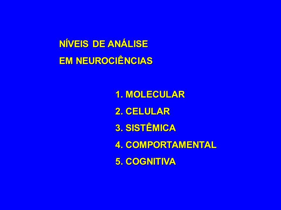 NÍVEIS DE ANÁLISE EM NEUROCIÊNCIAS 1. MOLECULAR 2. CELULAR 3. SISTÊMICA 4. COMPORTAMENTAL 5. COGNITIVA