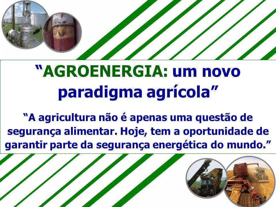 18 30/4/2014 AGROENERGIA: um novo paradigma agrícola A agricultura não é apenas uma questão de segurança alimentar. Hoje, tem a oportunidade de garant