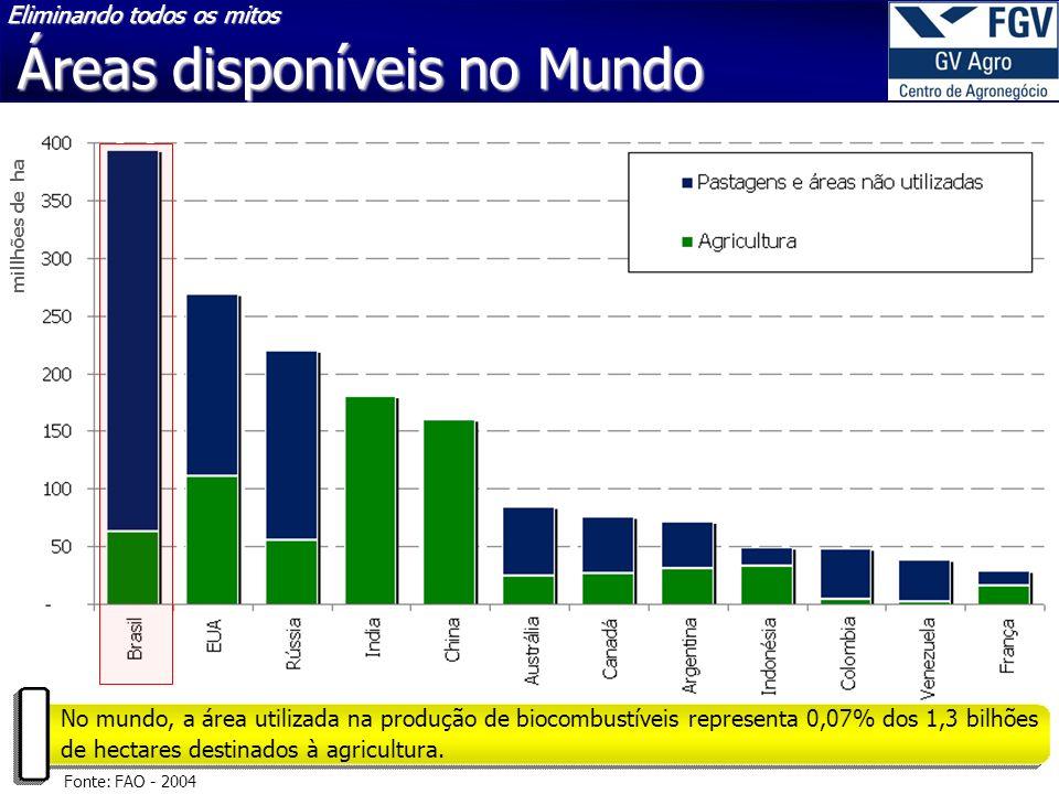 Fonte: FAO - 2004 millhões de ha No mundo, a área utilizada na produção de biocombustíveis representa 0,07% dos 1,3 bilhões de hectares destinados à agricultura.