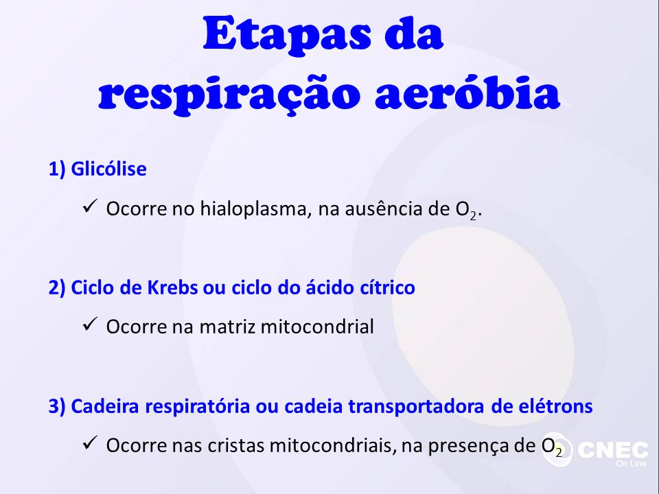 1) Glicólise Ocorre no hialoplasma, na ausência de O 2. 2) Ciclo de Krebs ou ciclo do ácido cítrico Ocorre na matriz mitocondrial 3) Cadeira respirató