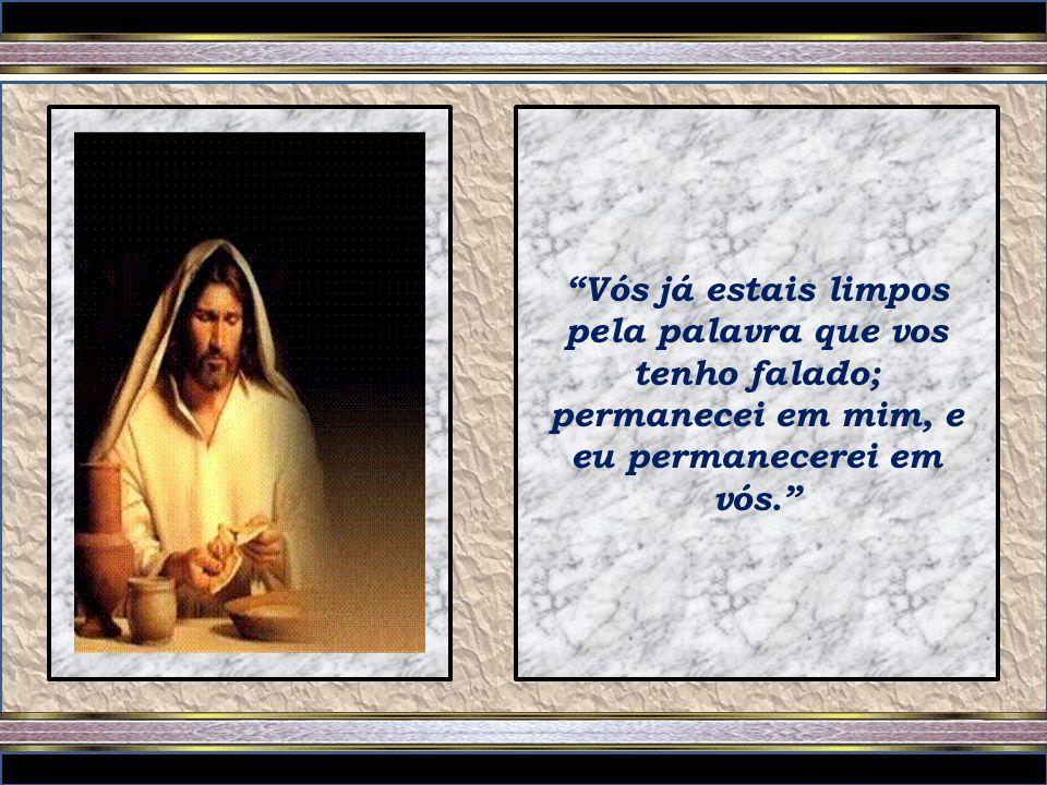 Eu sou a videira verdadeira, e meu Pai é o agricultor. Todo ramo que, estando em mim, não der fruto, ele o corta; e todo o que dá fruto limpa, para qu