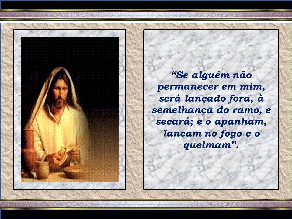 Eu sou a videira, vós, os ramos. Quem permanece em mim, e eu, nele, esse dá muito fruto; porque sem mim nada podeis fazer.