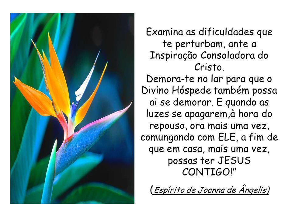 Distende tua Casa Cristã, à luz do Evangelho, para o mundo atormentado.