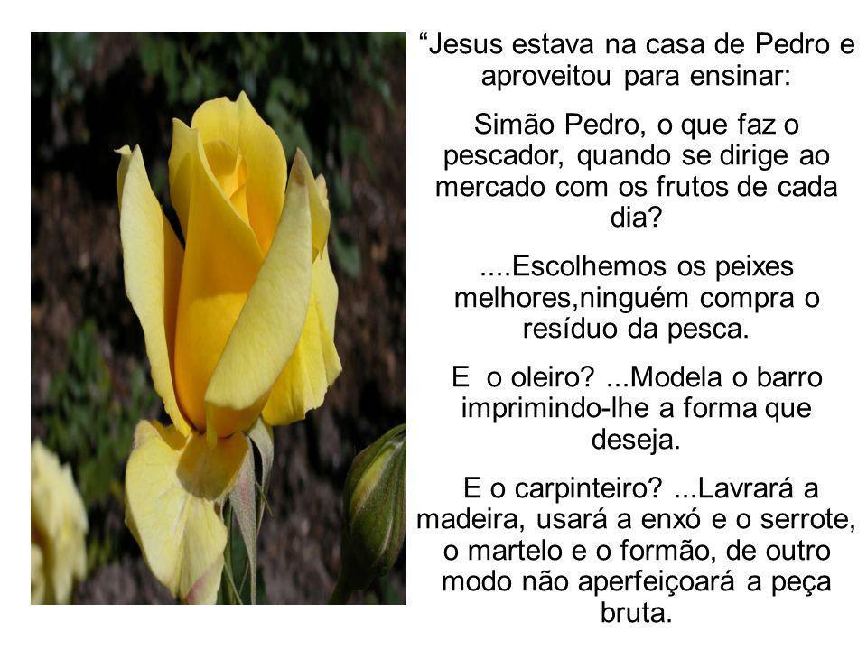 EVANGELHO NO LAR à Luz do Espiritismo