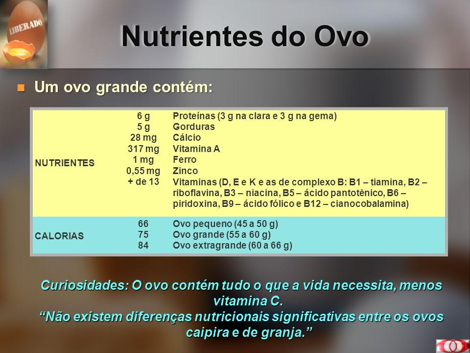 Nutrientes do Ovo Um ovo grande contém: Um ovo grande contém: Curiosidades: O ovo contém tudo o que a vida necessita, menos vitamina C. Não existem di