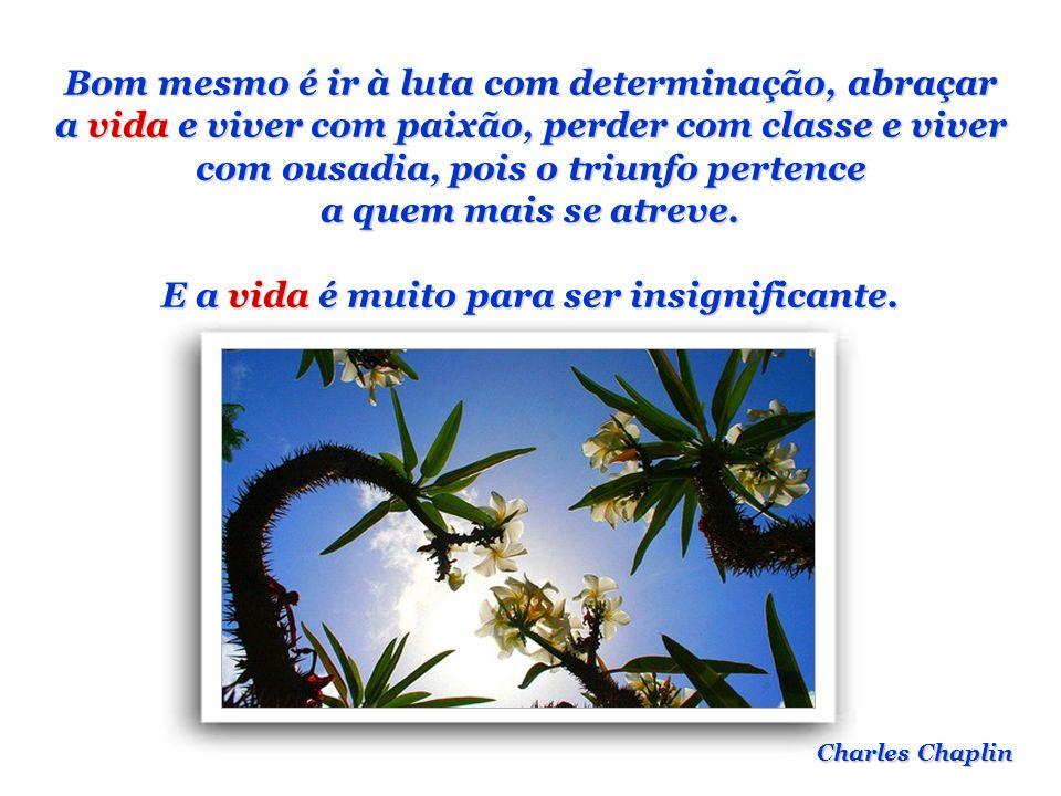 As coisas mais importantes na vida não são coisas. Anthony J. D Angelo