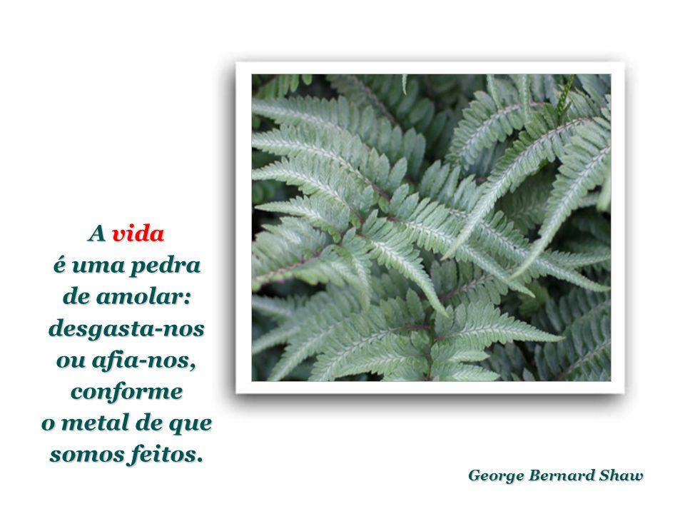 George Bernard Shaw A vida é uma pedra de amolar: desgasta-nos ou afia-nos, conforme o metal de que somos feitos.