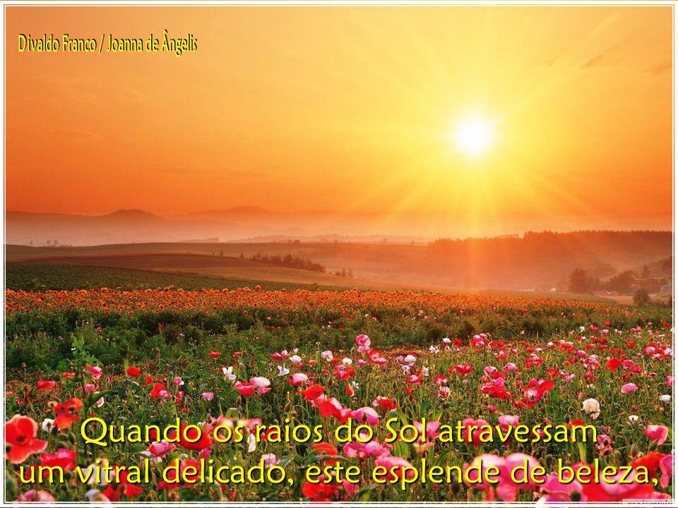 Quando os raios do Sol atravessam um vitral delicado, este esplende de beleza,