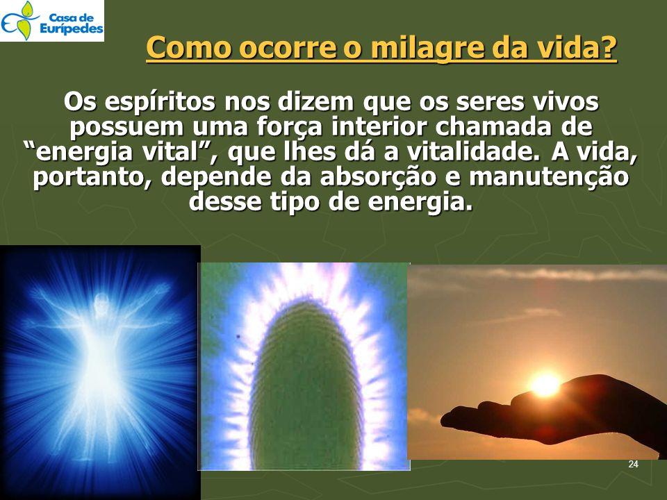 24 Como ocorre o milagre da vida? Os espíritos nos dizem que os seres vivos possuem uma força interior chamada de energia vital, que lhes dá a vitalid