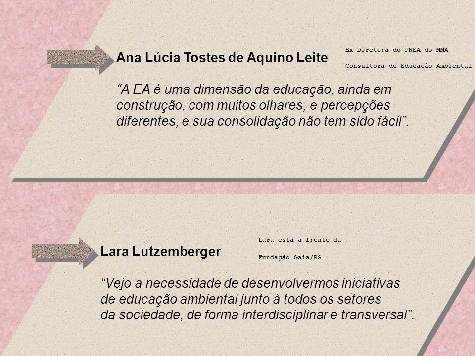 Ana Lúcia Tostes de Aquino Leite A EA é uma dimensão da educação, ainda em construção, com muitos olhares, e percepções diferentes, e sua consolidação não tem sido fácil.
